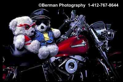 Teddy Bear couple out for a ride on their Harley Davidson Motorcycle.