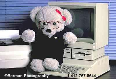 Ms computer Teddy Bear hard at work.