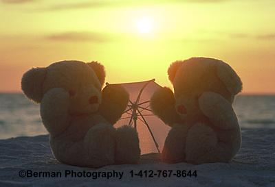 Romantic Teddy Bear couple is watching the sunset.