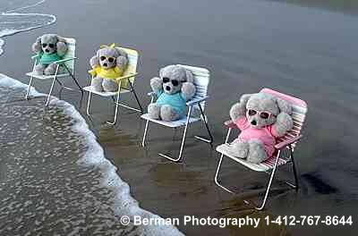 Teddy Bears enjoying the ocean breeze.