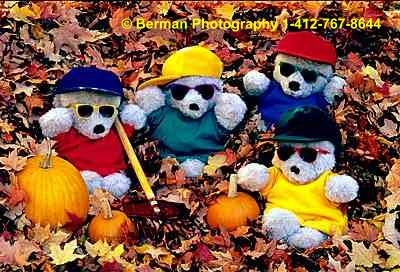 Teddy Bears playing in the autumn leaves.