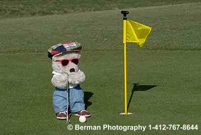 Teddy Bear playing golf about to get a hole in one.