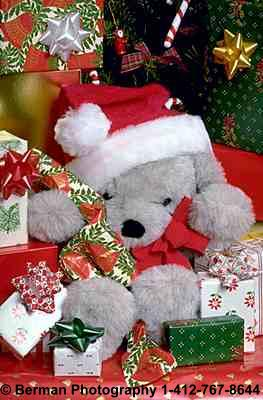 Teddy Bear playing Santa Claus. Helping to deliver Christmas presents to teddy bears all around the world.